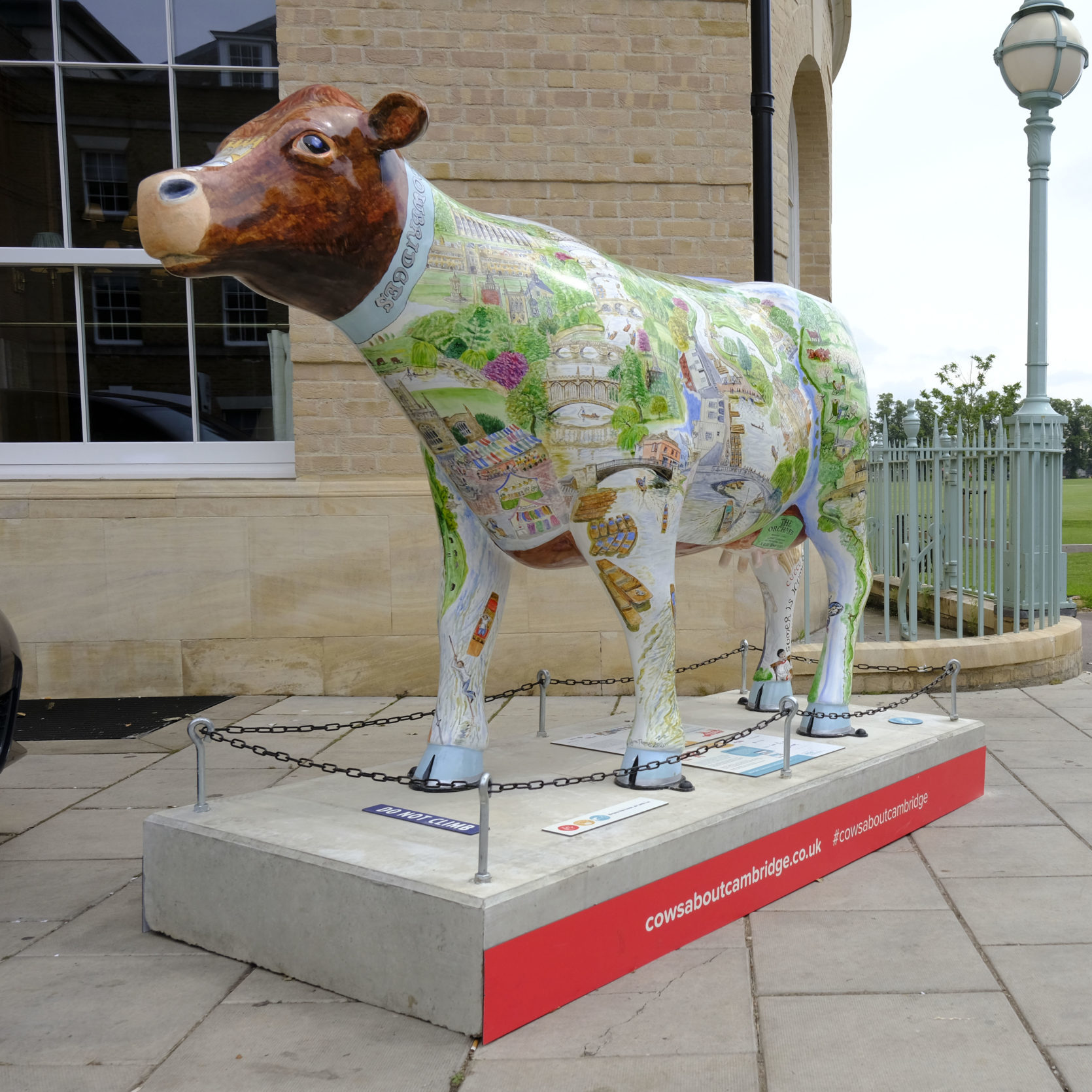 Staycationing in Cambridge: A Bovine Guide to the City